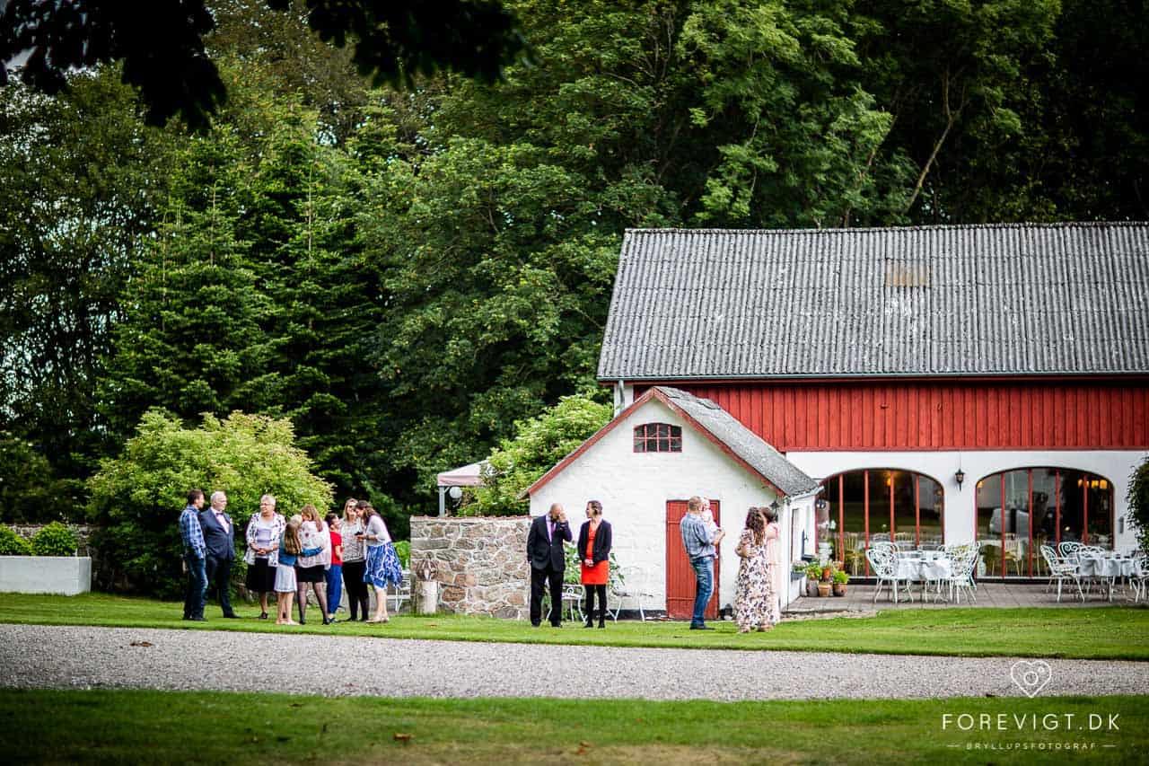 Spørsmål dere bør stille bryllupsfotografen