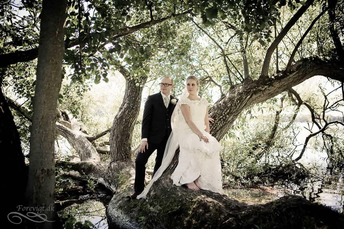 billeder bryllup københavn