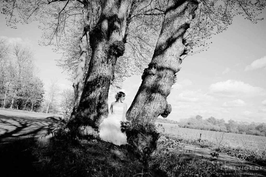 Alsidig fotograf med base i Nordjylland Pressefotos, fotojourmalistik