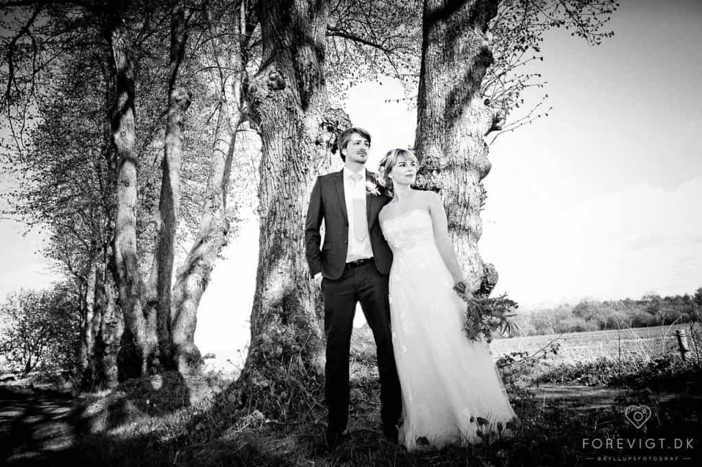 Wedding party #Hjørring #nordjylland #fotograf