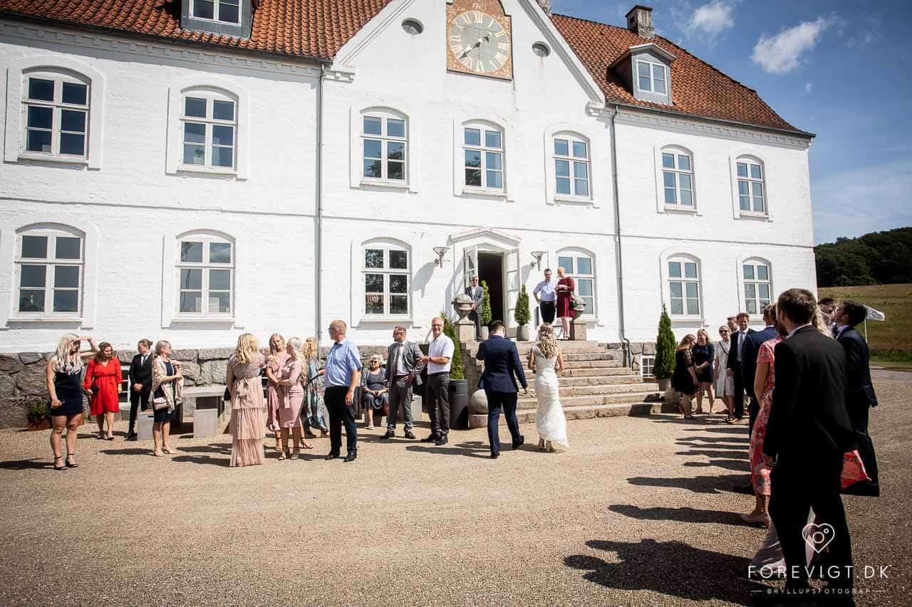 Festfotograf Vejle og Østjylland til event