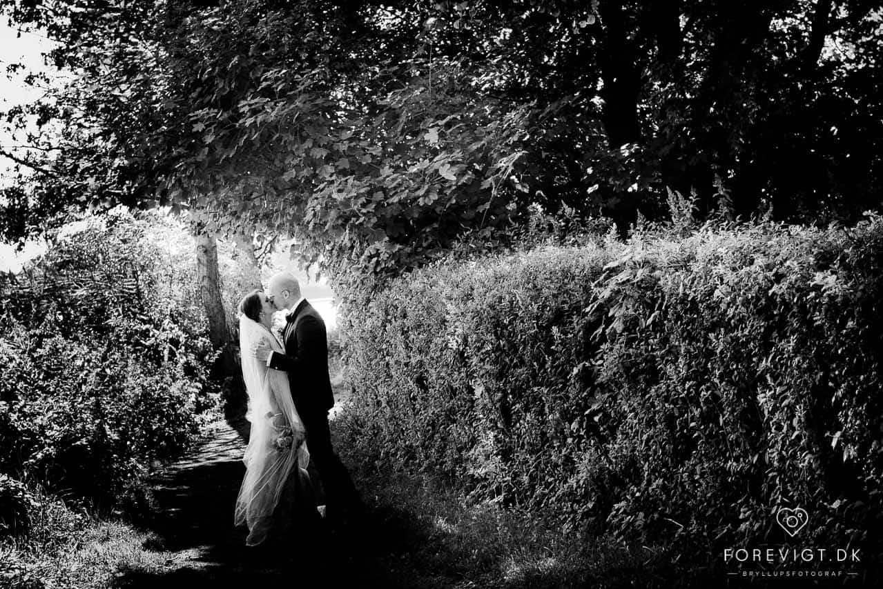 Bryllup og fest med overnatning og havudsigt ved Nordsjælland