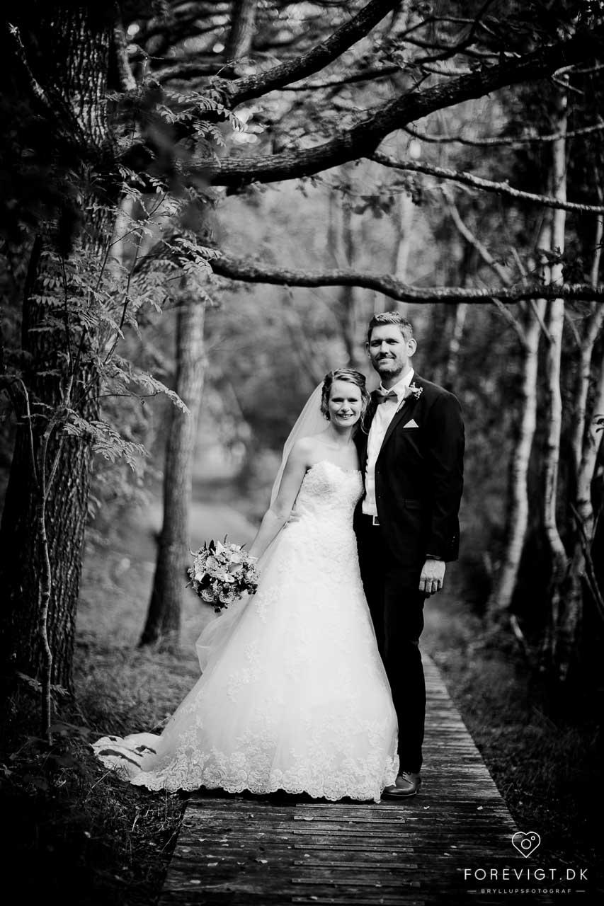 bryllupsbilleder Nordjylland