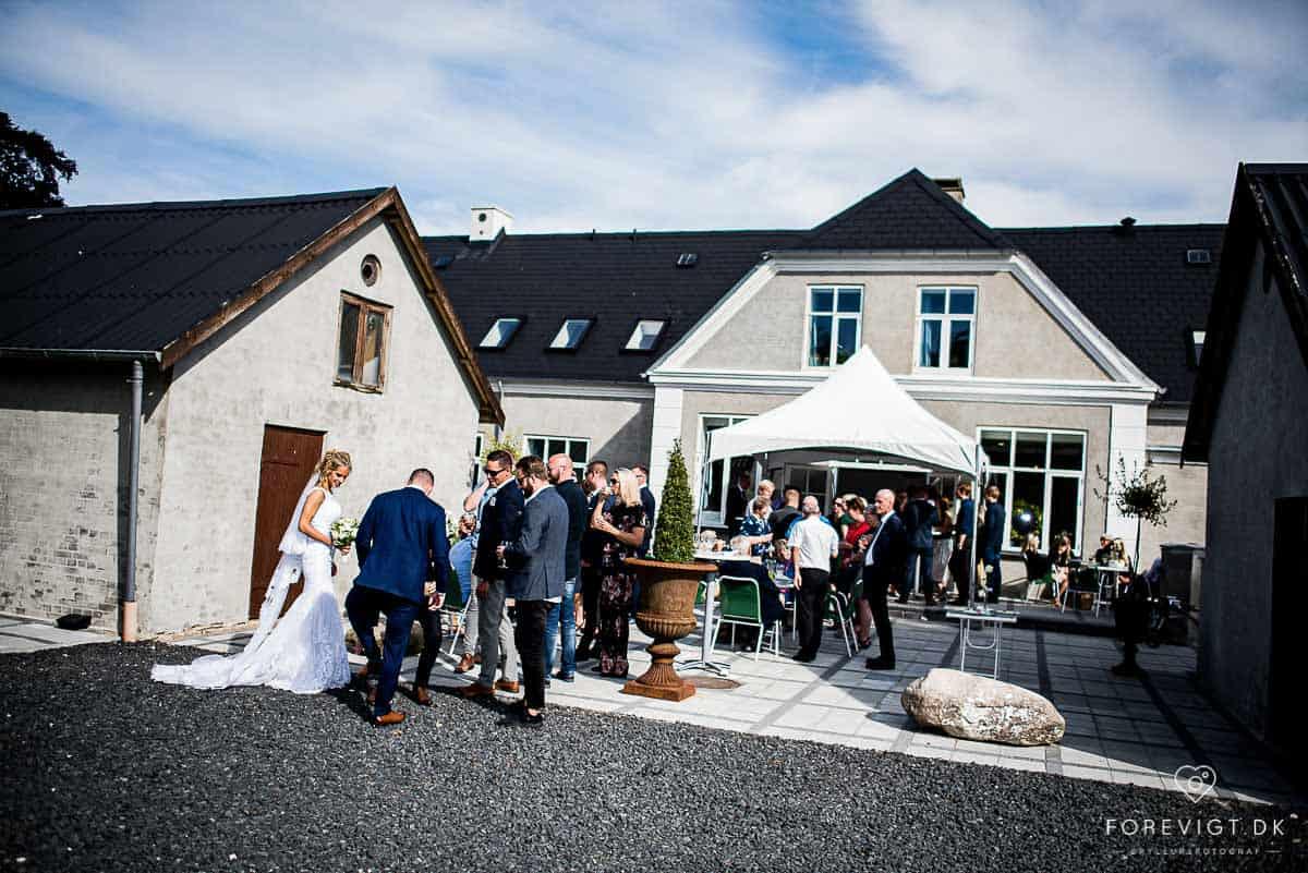 Bryllupportrætter og bryllupsfest ved Femhøj