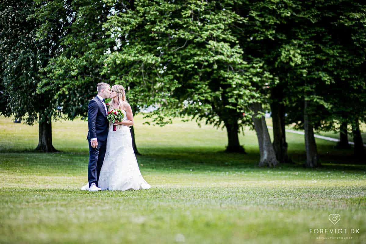Billeder af Roskilde bryllup