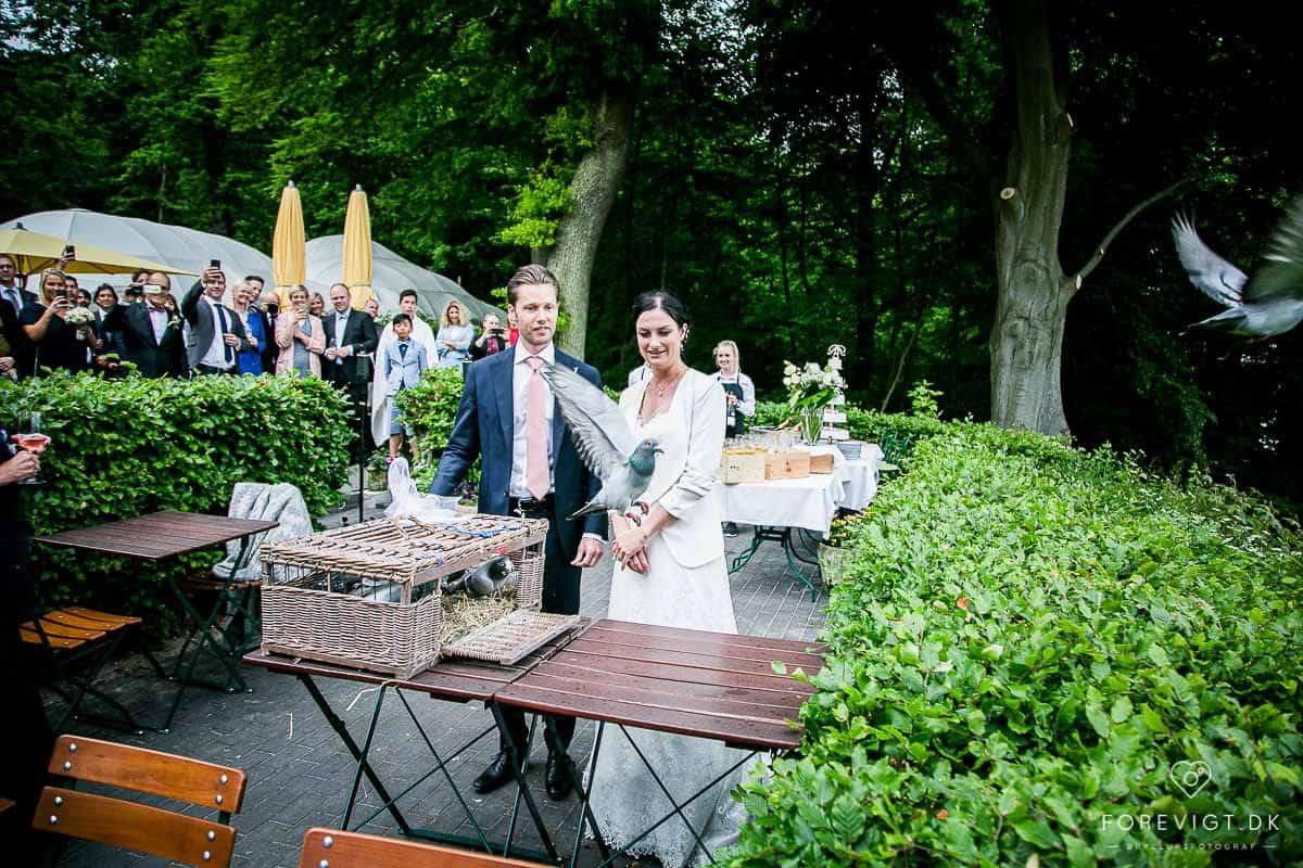 Billig bryllupsfotograf århus, Spar 40% på fotografi
