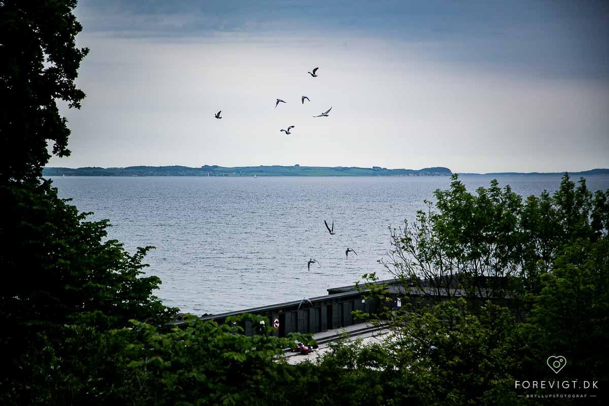 Bryllup ved vandet i Aarhus | Unik og anderledes lokation